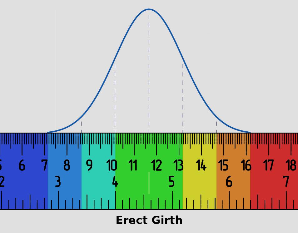 new_girth_chart