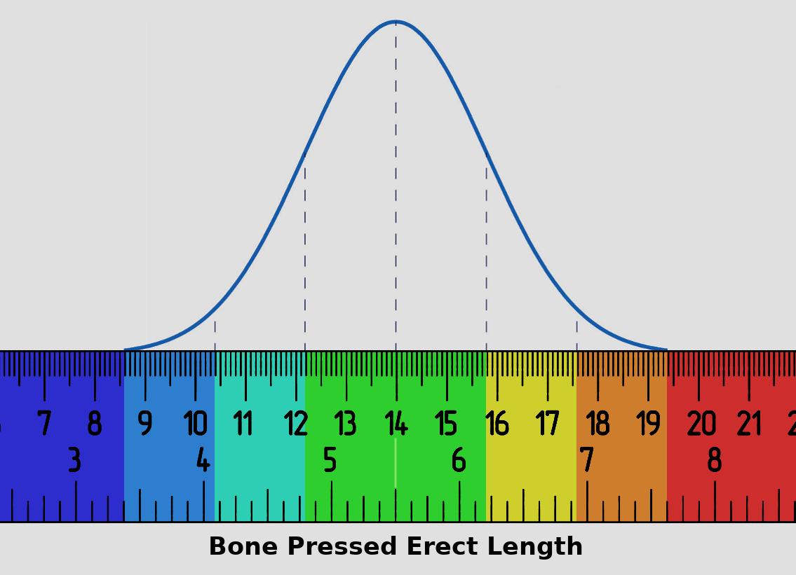 new_length_chart